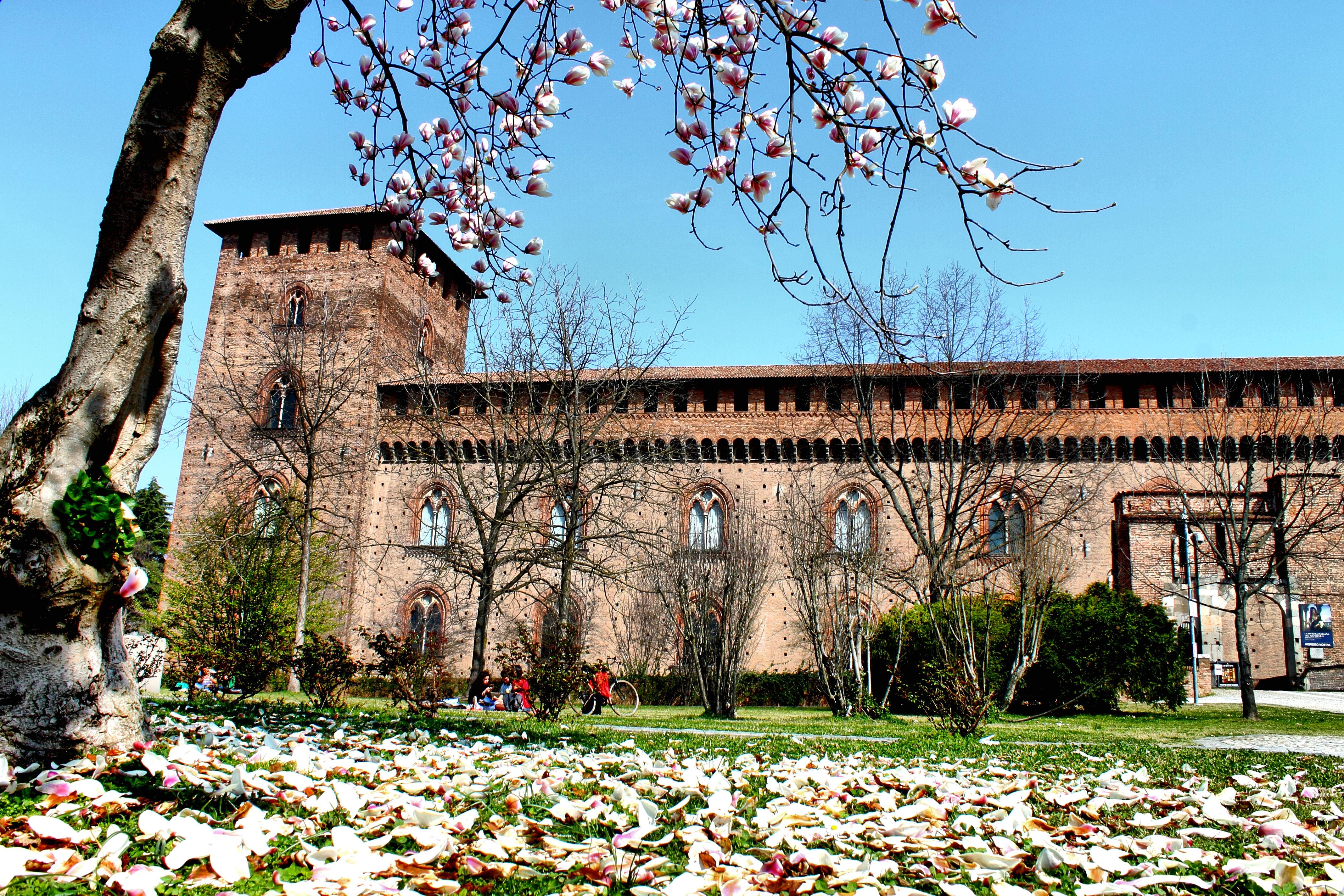 Pavia: città dei Visconti e degli Sforza - Ciclo di conferenze e visite guidate