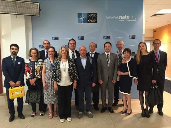UNIPV finanziata dalla NATO per la rigenerazione nelle lesioni cutanee