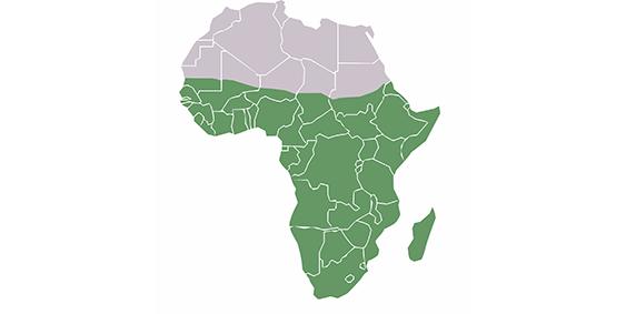 Borsa di studio per giovani ricercatori dell'Africa Sub-Sahariana