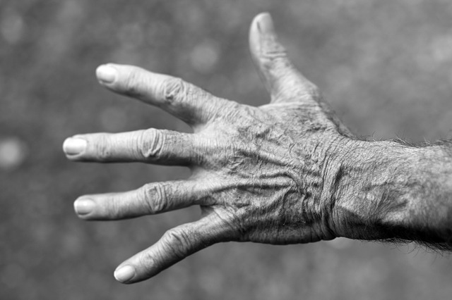 1 ottobre - Giornata Mondiale dell'Anziano