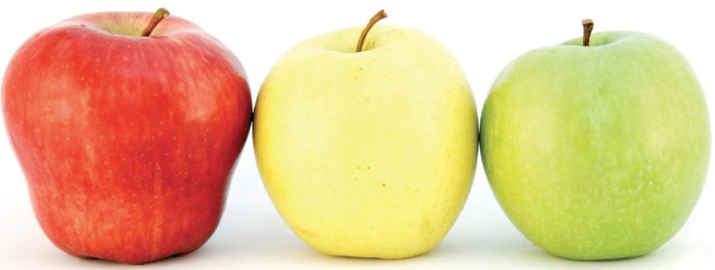 8 ottobre - A tavola con rispetto. Pluralismo alimentare, tutela delle minoranze e sostenibilità