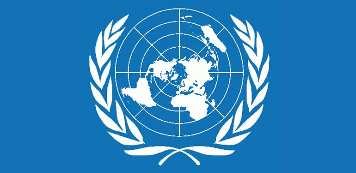 Programma Esperti Associati e Giovani Funzionaridelle Organizzazioni Internazionali