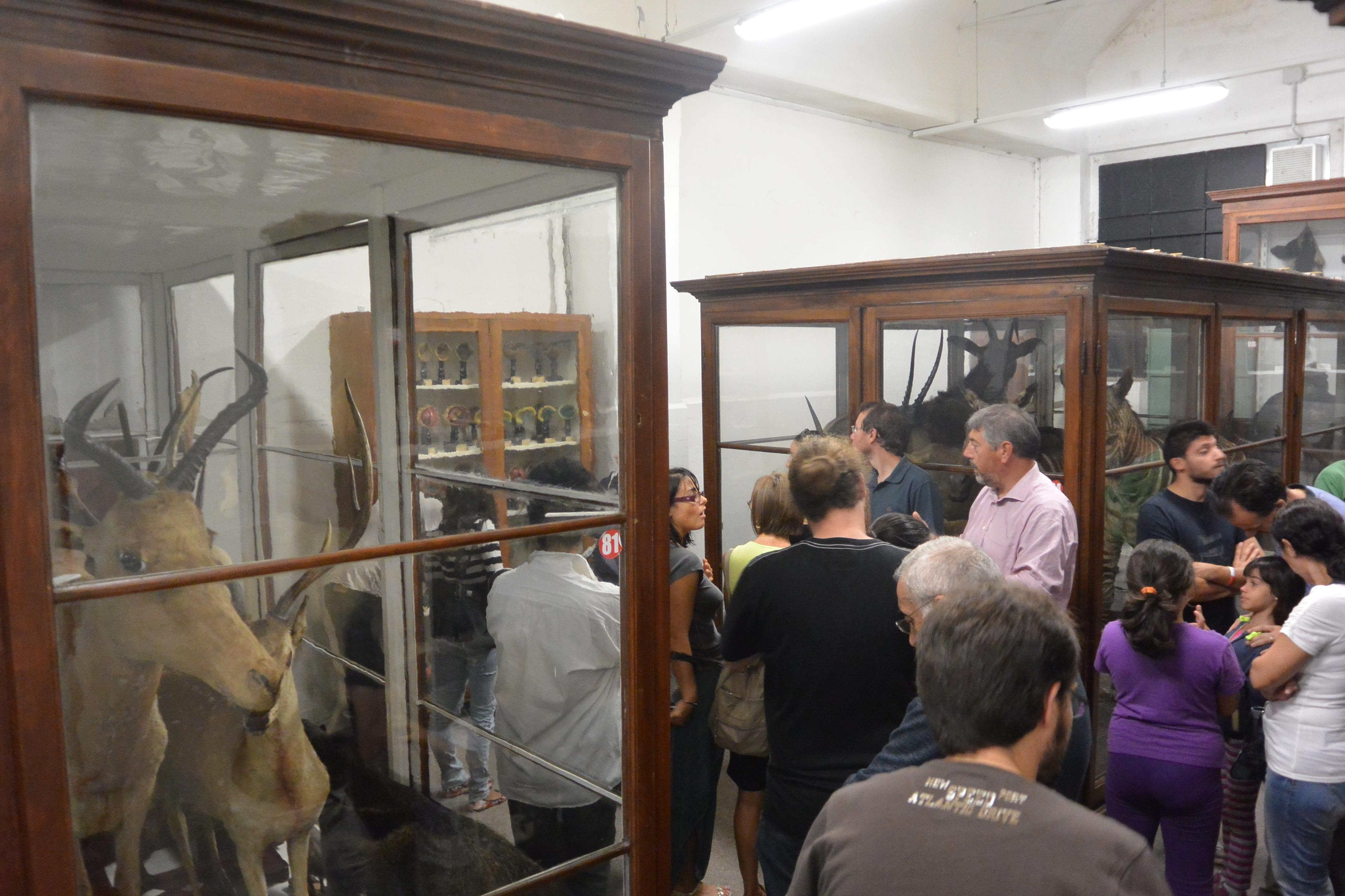 16 gennaio - Apertura Museo di Storia Naturale (Sede di via Guffanti)