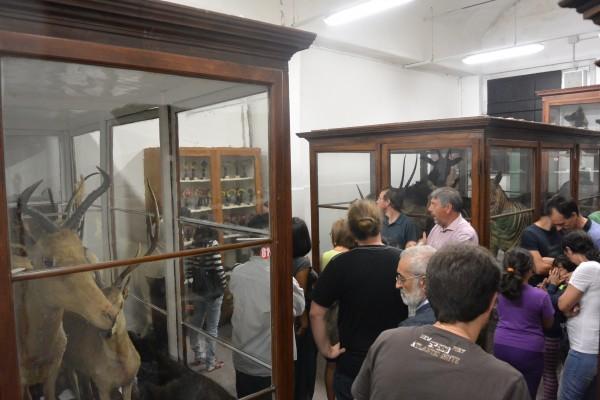 Dal 6 al 9 settembre – Ultime aperture Museo Storia Naturale pre-restauro