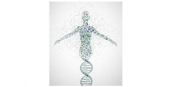 Dal 19 al 21 luglio - Analisi di dati NGS ed applicazioni in ambito diagnostico
