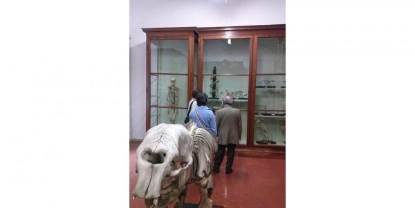 10 settembre - Il Sistema Museale di Ateneo UNIPV partecipa alla Notte Bianca