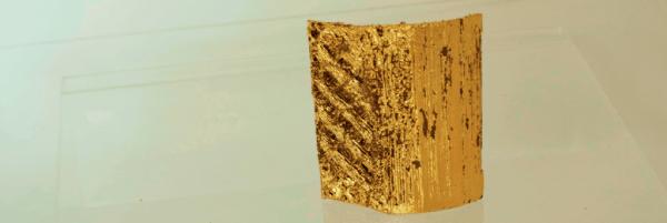 Dal 7 al 9 ottobre - Alessandra Angelini. Natura e artificio. Creazione e stampa 3D