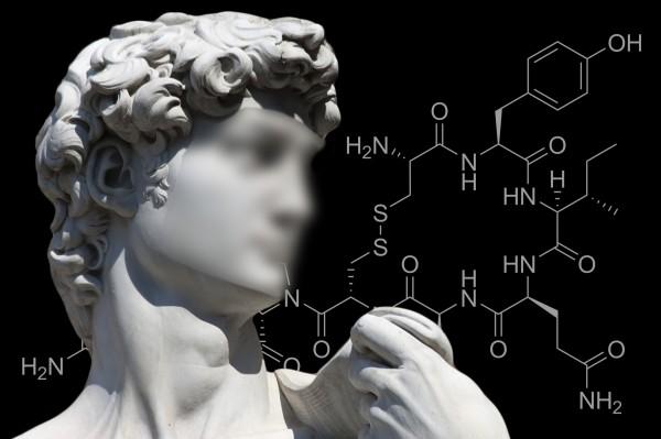 """Sulla rivista """"Neuroscience"""" il primo studio (UNIPV – Milano Bicocca) che prova un coinvolgimento genetico nella difficoltà di riconoscere i volti"""