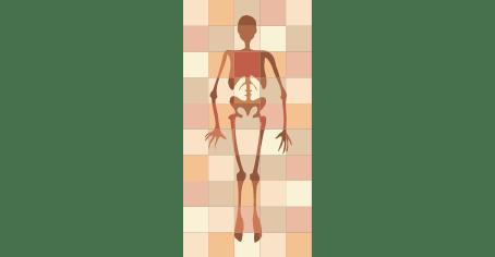 26 novembre - Visita guidata a tema: Scuola di anatomia