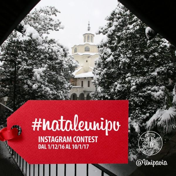 L'Università di Pavia festeggia ilNatalesu Instagram!