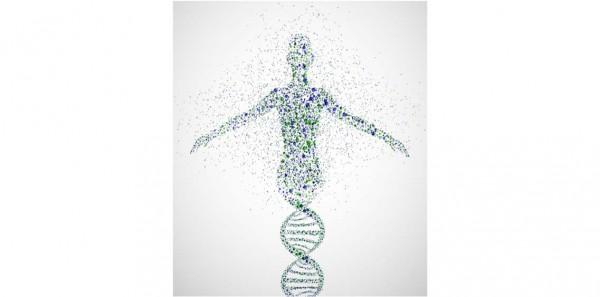 Dal 22 al 24 marzo - Analisi di dati NGS ed applicazioni in ambito diagnostico