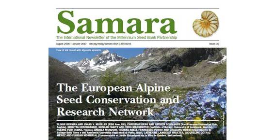 L'Università di Pavia coinvolta nella ricerca sulla conservazione delle piante alpine