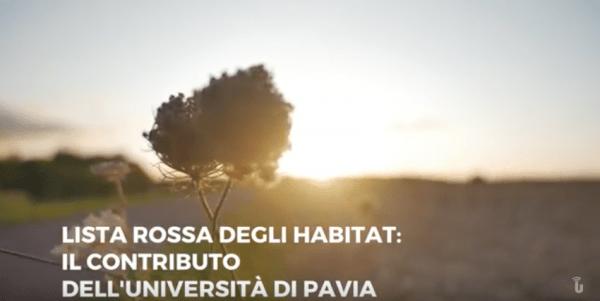Lista Rossa degli Habitat: il contributo dell'Università di Pavia (Video)