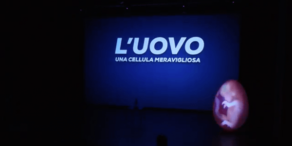 """UNIPV partecipa al progetto """"Cellule e altri misteri all'origine della vita"""""""