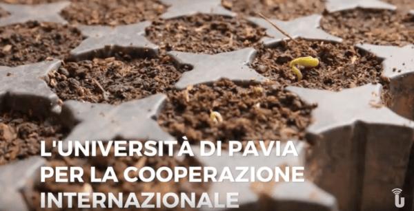 L'Università di Pavia per la cooperazione internazionale (Video)