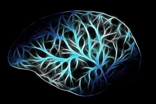 Dall'11 al 17 marzo - Settimana Mondiale del Cervello 2019