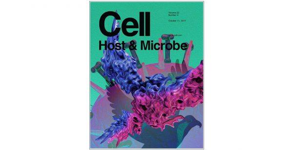 """Ricerca UNIPV: un passo avanti per combattere il batterio """"Helicobacter pylori"""" che causa il cancro dello stomaco"""