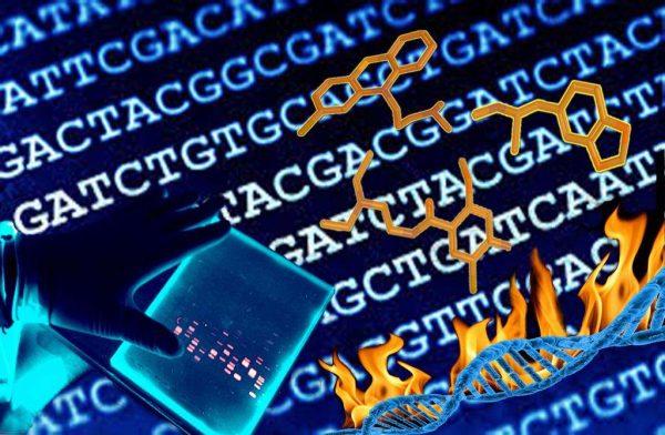 """9 novembre – """"DNA: un affare che scotta"""". Rischi da uso di farmaci e droghe"""