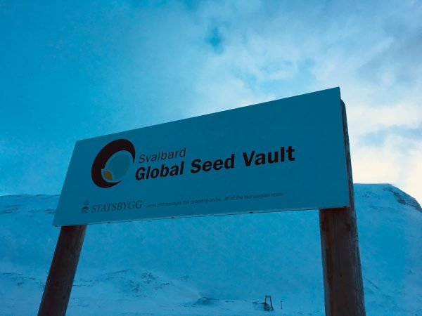 UNIPV alle Isole Svalbard per i 10 anni della Banca dei semi più famosa del mondo