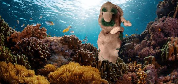 6 ottobre - Posidonia oceanica... il ritorno! Dibattito tra i pupazzi e l'ecologa marina