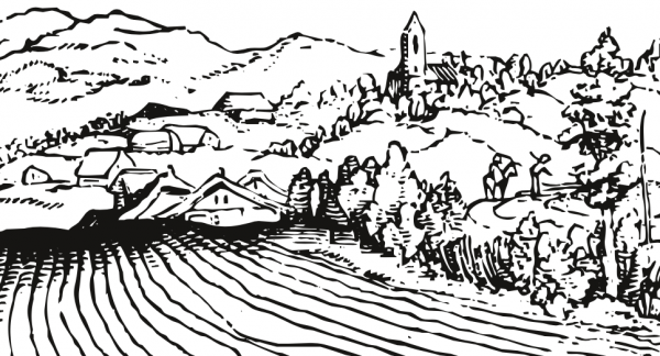 22 e 23 novembre - Trading Peasant Land
