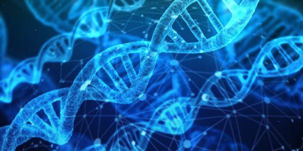 Genetica: Nextclinics acquisisce Microgenomics, spin-off UniPV