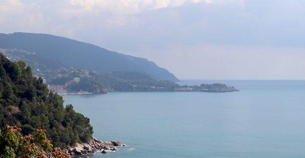 L'Università di Pavia per la biodiversità del Mediterraneo: individuate nuove specie aliene in Liguria