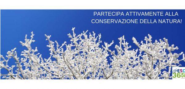 Monitoraggio di flora e fauna: il progetto Life ESC360