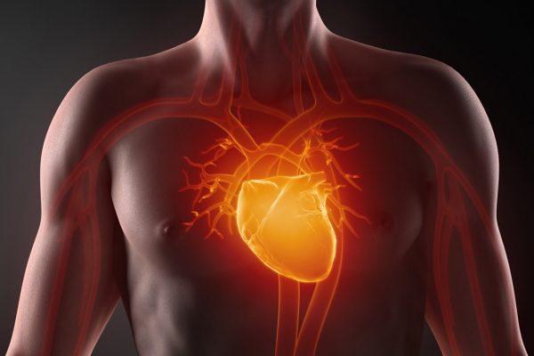 """Master in """"Cardiologia Riabilitativa e Preventiva"""""""