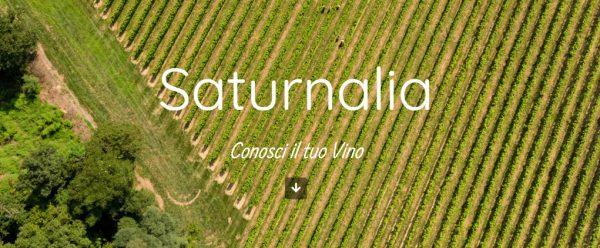 Saturnalia pronto al lancio!