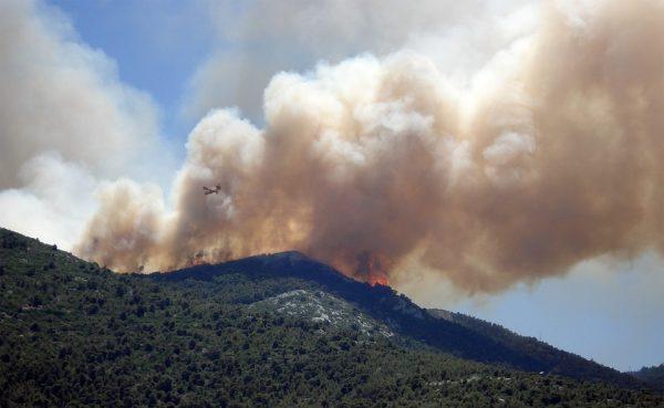 29 marzo – Il fuoco come fattore ambientale, incontro con i Carabinieri Forestali