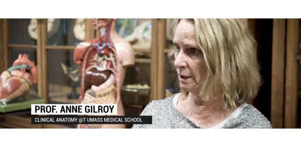 Virtual Anatomy all'UniPV (Video)