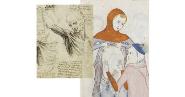 Dal 18 maggio - Leonardo Da Vinci e Guido da Vigevano: Anatomia in figure