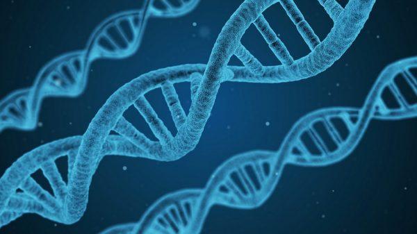 """Dal 21 al 24 settembre - Corso di formazione """"Analisi di dati NGS ed applicazioni in ambito diagnostico"""""""