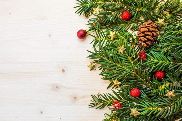 30 novembre - Natale Plastic Free