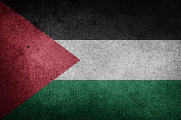 28 novembre - Palestine – Expectation vs Reality