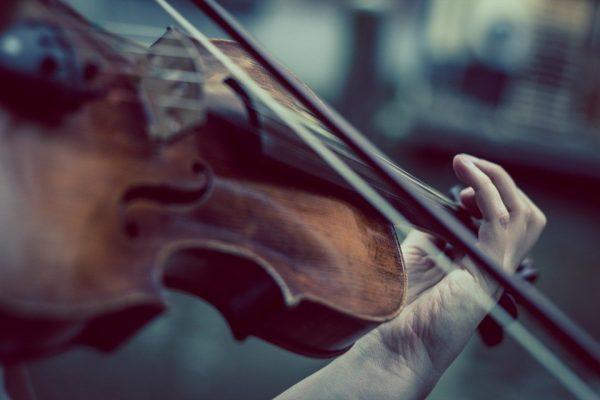 19 novembre - Concerto Inaugurazione A.A. 2019/2020 Collegio Plinio Fraccaro
