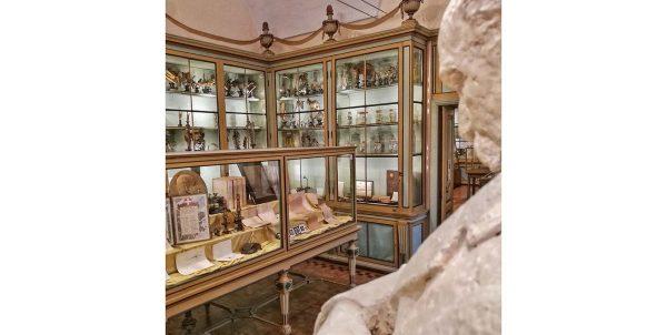Riaprono i Musei dell'Università di Pavia
