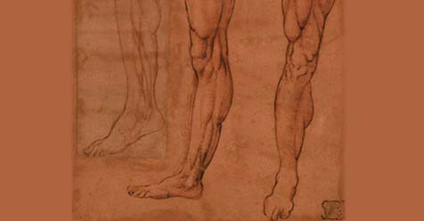 30 e 31 gennaio – Anatomia, meccanica e visualizzazione. Leonardo da Vinci e Guido da Vigevano