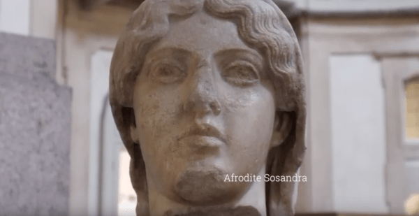 1820-2020, il Museo di Archeologia dell'Università di Pavia compie 200 anni (Video)