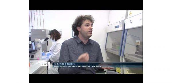 Federico Forneris UniPV intervistato al TG1 per i test sul plasma