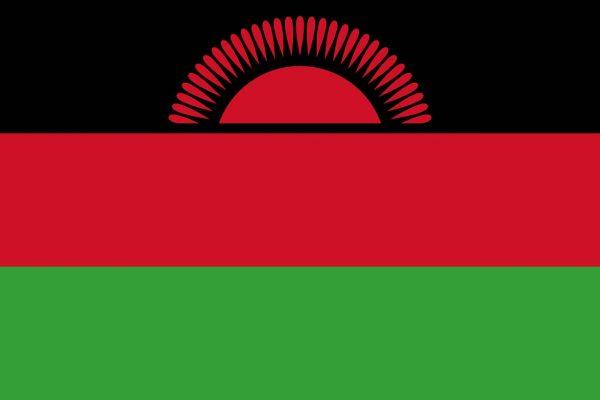 Ex-alunno del Master in Cooperazione e Sviluppo Unipv nominato Ministro per l'Unità nazionale e l'Educazione civica in Malawi: quando la formazione pavese fa la differenza!
