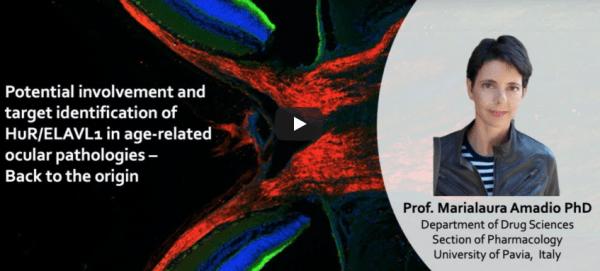 NeuroEYEscience: la prof.ssa Amadio Unipv ha partecipato a un'iniziativa della Bristol University (Video)