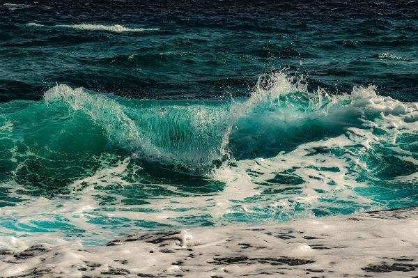 """""""Oceanthon"""", primo hackathon italiano interamente dedicato all'oceano"""