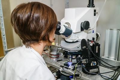 11 febbraio - Donne in Scienza