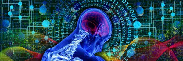 """Unipv alla guida del progetto europeo """"explainable artificial intelligence in healthcare management"""" per lo sviluppo di un master dedicato all'uso dell'AI spiegabile in ambito sanitario"""